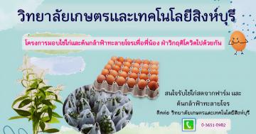 มอบไข่ไก่และฟ้าทะลายโจร